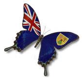 Bandiera isole turks e caicos sulla farfalla — Foto Stock