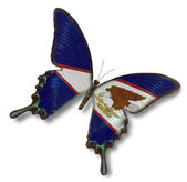 American Samoa flag on butterfly — Stock Photo