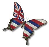 Bandeira de havaí na borboleta — Foto Stock