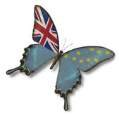 Tuvalu flag on butterfly — Stock Photo