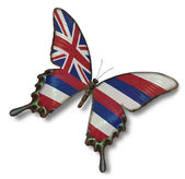 Hawaii flag on butterfly — Stock Photo