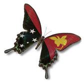 巴布亚新几内亚国旗上蝴蝶 — 图库照片