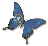 Northern Mariana Islands flag on butterfly — Stock Photo