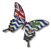 Bandera del territorio británico del océano índico en mariposa — Foto de Stock