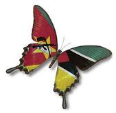 Drapeau du mozambique sur papillon — Photo