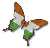 Niger flag on butterfly — Stock Photo