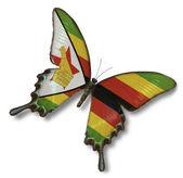 Bandera de zimbabue en mariposa — Foto de Stock