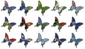 Collage from Australia and Oceania flags on butterflies — Stockfoto