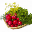 Radish and dill in bascet — Stock fotografie
