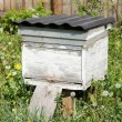 Beehives in the apiary — Stock Photo #11023553