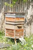 Colmenas en el apiario — Foto de Stock