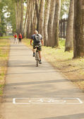 On the bike path in the park (focus on foreground) — Stock Photo