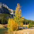 Autumn in Banff National Park, Alberta, Canada — Zdjęcie stockowe