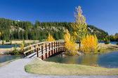 Autumn in Banff National Park, Alberta, Canada — Stock Photo
