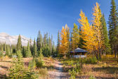 Sunny day of autumn in Kootenay National Park, Canada — Stock Photo