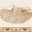 Vintage wine label background with sketch of old chateau, landscape with village and vineyard, grapes floral ornament for decoration and design - Stock Vector