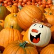 Painted pumpkin shining out of a heap — Stock Photo #11741739