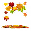Colorful autumn leaves falling down — Stock Photo #12196997