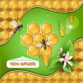 Achtergrond met bijen en honingraat — Stockvector
