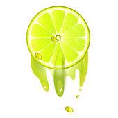 Juicy slice of lemon fruit — Stock vektor