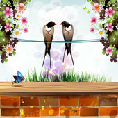 Garden with two swallows — Stock Vector