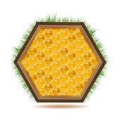 Honungskakor med trä — Stockvektor