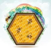 деревянная рамка с пчелы — Cтоковый вектор