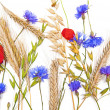 Stock Photo: Flowers and cereals