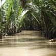 Canal of the Mekong river — Stock Photo #11813724