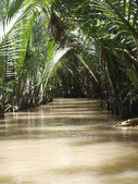 Canal of the Mekong river — Stock Photo