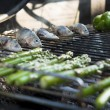 Mediterranean BBQ — Stock Photo
