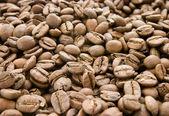 Coffee new 4 — Stock Photo
