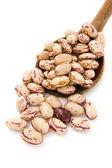 Beans 12 — Stock Photo