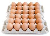 яйца новые 12 — Стоковое фото