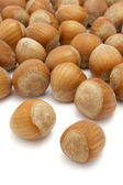 Hazelnuts 1 — Stock Photo