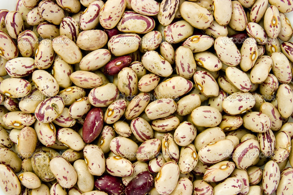 Close up of raw beans — Stock Photo #10793058