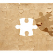 Puzzle pieces — Stock Photo #11078021