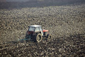 Agriculture tractor cultivated lanf field vegetable — Stock Photo