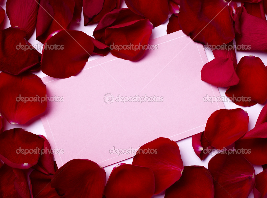 Close up of greeting card dwith rose petals decoration — Lizenzfreies Foto #11410818