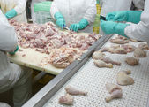 Poultry processing meat food industry — Stock Photo