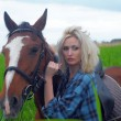 Sexy blonde beside the horse — Stock Photo #11842088