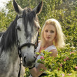 Blonde girl with a horse — Foto Stock