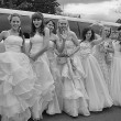 Brides parade 2012 — Stock Photo #12030020
