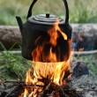 Teapot and kettle on a fire in the summer — 图库照片