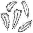 Stock Vector: Feather Set