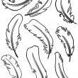Feather Set — Stock Vector #11451737