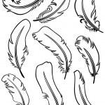 conjunto de pluma — Vector de stock  #11451737