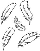 Feather Set — Vecteur