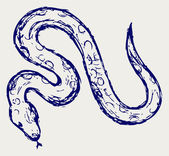 Yılan kroki — Stok fotoğraf