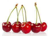 Cherry, on a white background — Stock Photo